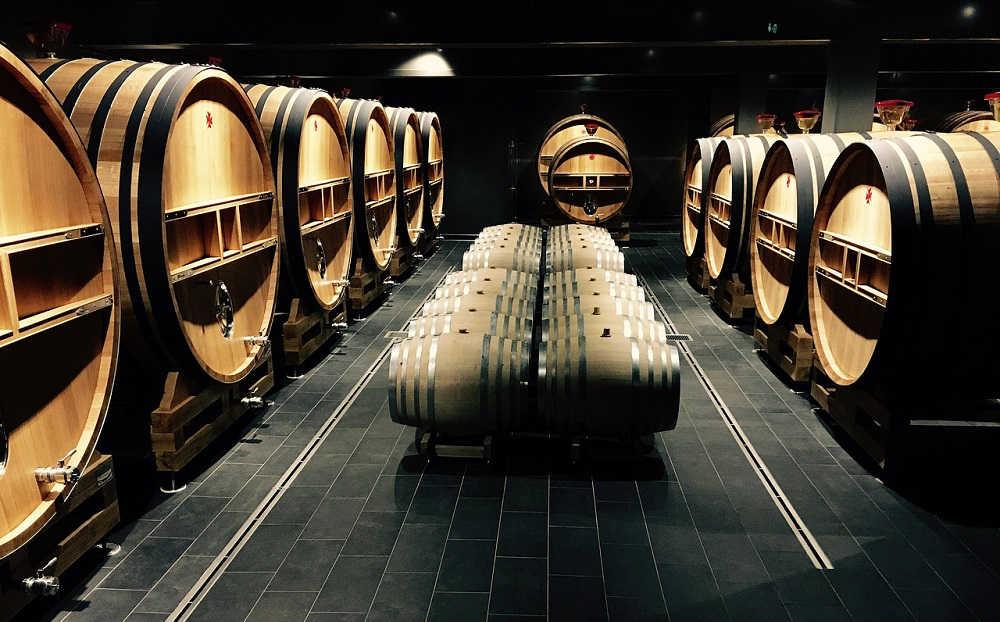 ¿Quieres trabajar en el sector del vino? Descubre el Grado en Enología