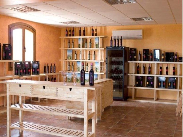 Catas de vinos en Almería, una experiencia única