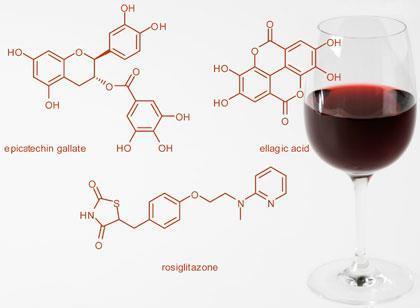 Polifelones del vino, ¿qué son y para qué sirven?